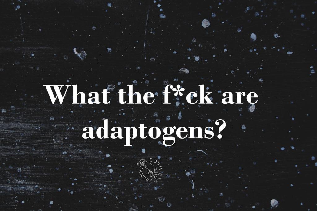 O co chodzi z tymi adaptogenami?