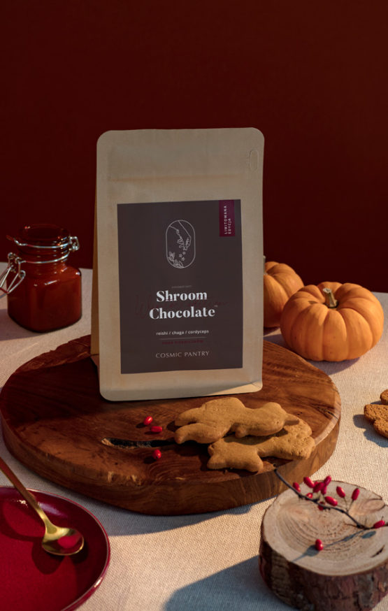 Shroom Chocolate Winter